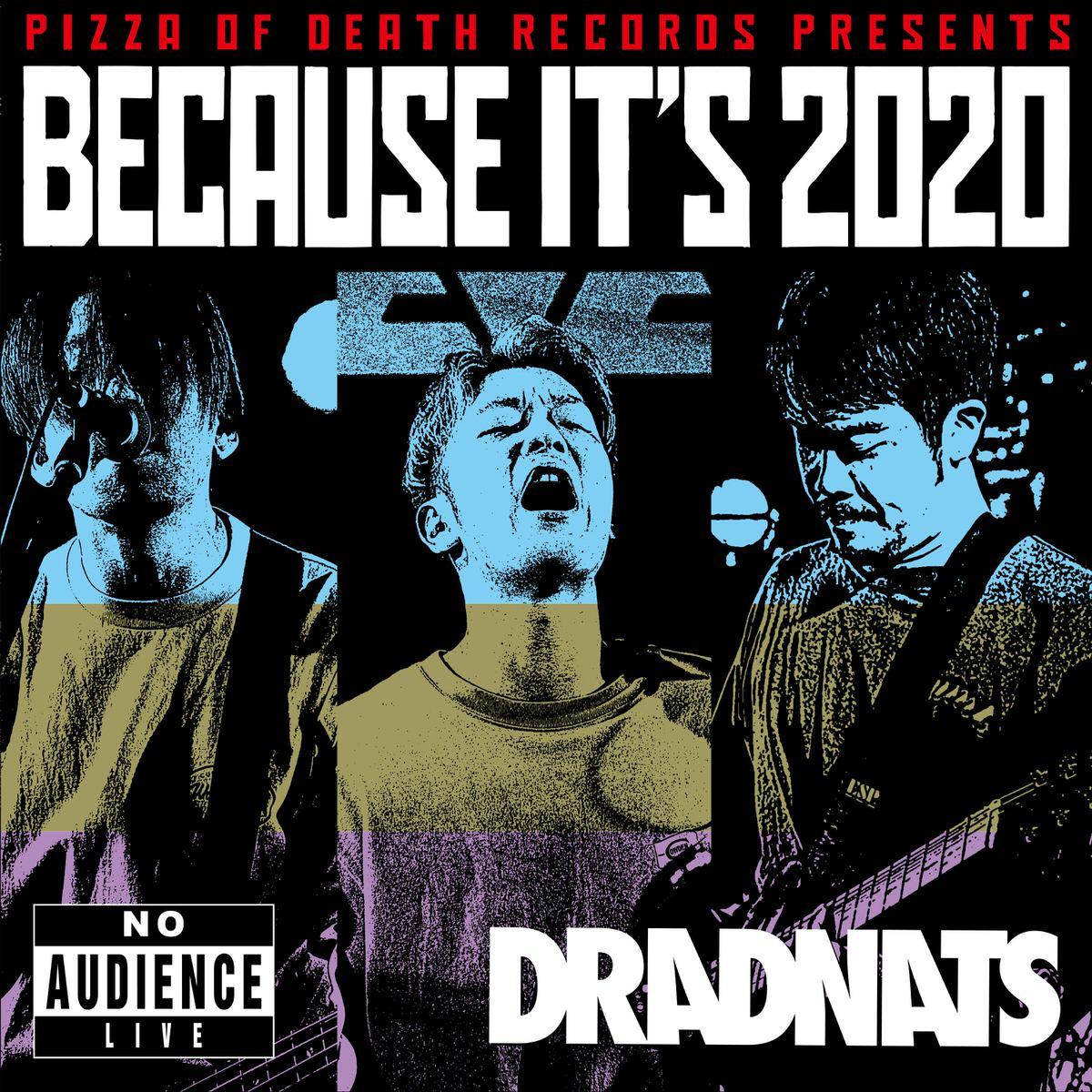 BECAUSE IT'S 2020 / DRADNATS ジャケット画像